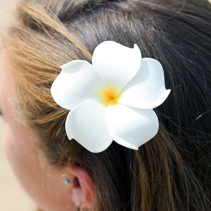 Hawaii hair clips
